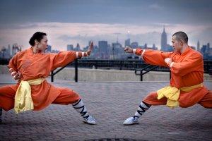 Teoria do Kung Fu