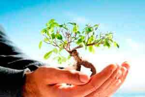 Introdução à Gestão e Licenciamento Ambiental