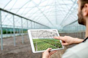 Projetos Agropecuários