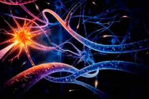 Introdução à neuropsicologia da idade adulta e envelhecimento