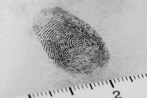 Introdução à Criminologia e a Segurança Pública