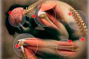 Introdução à Magnetoterapia