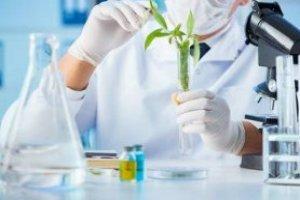 Introdução a Laboratório de Bioquímica Clínica