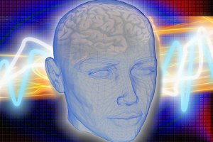 Introdução à Neuroanatomia