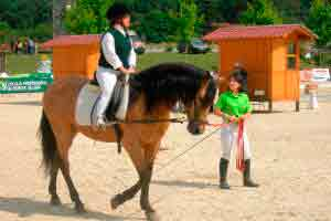 Volteio e equitação