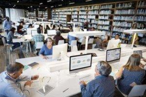 Introdução à Biblioteca e Informação
