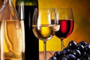 Introdução aos Vinhos