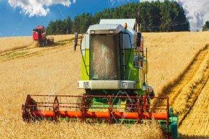 Básico para operador de colhedeitadeira de grãos