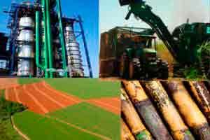 Introdução à Produção de Açúcar e Álcool