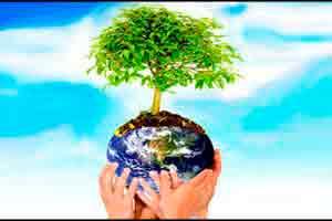 Introdução à Gestão Ambiental