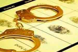 Introdução ao Direito Criminal e a Segurança Pública