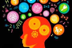 Introdução à Neuropsicopedagogia